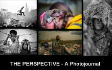 Photo Journal-cms